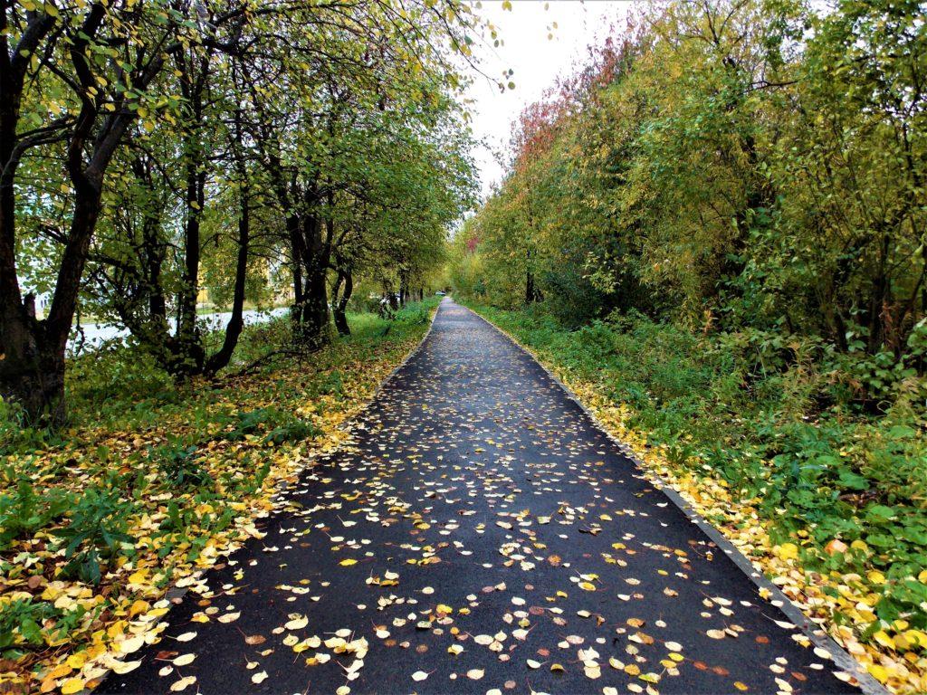 Осенний тротуар по улице Ленина