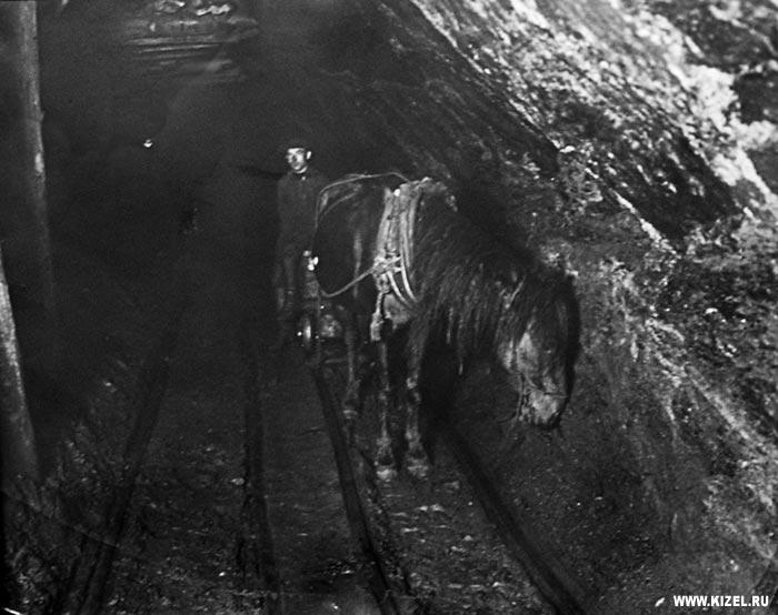 Была такая шахтерская профессия - коногон Дата начало XX века